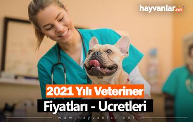 2021 Veteriner Ücretleri - Fiyatları